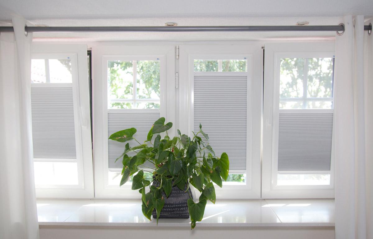 28 okt keje raamdecoratie ook bij braak velsen